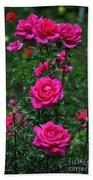 Roses In The Garden Beach Towel