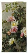 Roses On A Wall Beach Towel