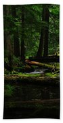 Ross Creek Montana Beach Towel
