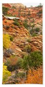 Rough Terrain In Autumn Along Zion-mount Carmel Highway In Zion Np-ut Beach Towel