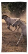 Rounding Up Horses On The Ranch Beach Towel