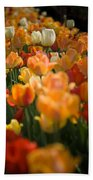 Row Of Colorful Tulips Beach Towel