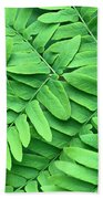 Royal Fern  Frond Detail Beach Towel
