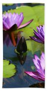 Royal Purple Water Lilies Beach Towel