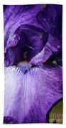 Royale Purple Petals Beach Towel