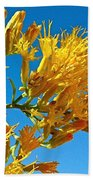 Rubber Rabbitbrush Off Hole-in-the-rock Road In Grand Staircase Escalante National Monument-utah Beach Towel
