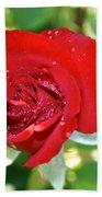 Ruby Rose Diamond Dust Beach Towel