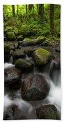Ruckel Creek  Oregon, United States Beach Towel