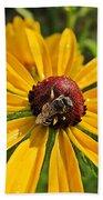 Rudbeckia Bee Beach Towel