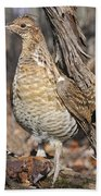 Ruffed Grouse On Mossy Log Beach Towel