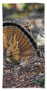 Ruffed Grouse Rear Strut Beach Towel