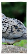 Ruffled Feathers Beach Towel