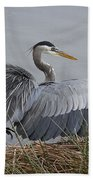 Ruffled Feathers Beach Towel