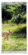 Run Cheetah Run 0 To 60 In 3 Seconds Beach Towel