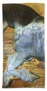 Run With Me Sunrise Beach Towel by Betsy Knapp