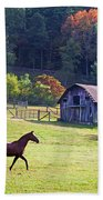 Running Horse And Old Barn Beach Towel