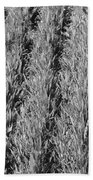 Rural America Black And White Beach Towel