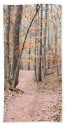 Rustic Trails In January 2013 Beach Towel