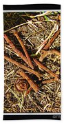 Rusty Nails Beach Towel