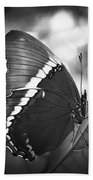 Rusty Tip Butterfly Black And White Beach Towel