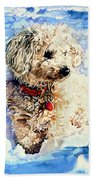 Sacha Beach Towel