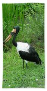 Saddle Billed Stork-136 Beach Towel