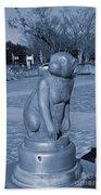 Sagamihara Asamizo Park 7e Beach Towel