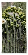 Saguaro In Bloom Beach Towel