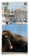 Sailing Dreams  Beach Towel
