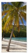 Saint Thomas Beach Towel