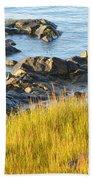 Salem Coastline Beach Towel