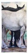 Sally's Horses Beach Towel