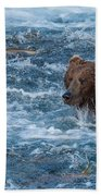 Salmon Salmon Everywhere Beach Towel