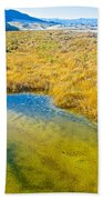 Salt Creek Near Salt Creek Trail In Death Valley National Park-california Beach Towel