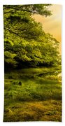Salt Marsh Kittery Maine Beach Towel