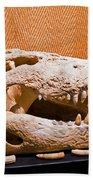 Salt Water Crocodile Skull Beach Towel