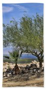 Salton Sea Oasis Beach Towel