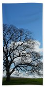 Same Tree Many Skies 11 Beach Towel