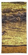 Sand Piper Beach Towel by Marvin Spates