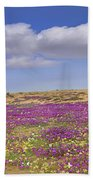 Sand Verbena On The Imperial Sand Dunes Beach Towel