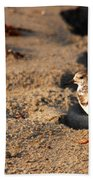 Sanderling 005 Beach Towel