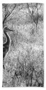 Sandhill Chick In The Marsh - Black And White Beach Towel