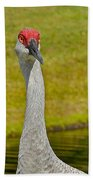 Sandhill Crane Face-on Beach Towel