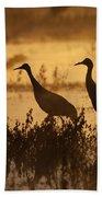 Sandhill Crane Trio At Sunrise Bosque Beach Towel