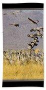 Sandhill Cranes On The Ground Beach Towel