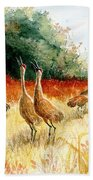 Sandhill Serenade Beach Towel