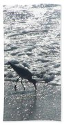 Sandpiper Finds Food In Surf Beach Towel