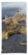 Sandpipers 1 Beach Towel