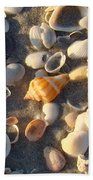 Sanibel Island Shells 2 Beach Towel