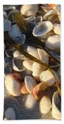 Sanibel Island Shells 4 Beach Towel